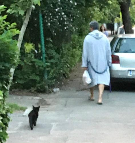 """Concurs cu premiu (1). """"Omul cu pisica neagră"""". Scrieți o poveste!"""